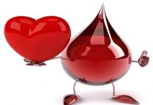 facts about human heart and blood