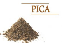 PICA during pregnancy