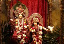 significance and importance of janmastami