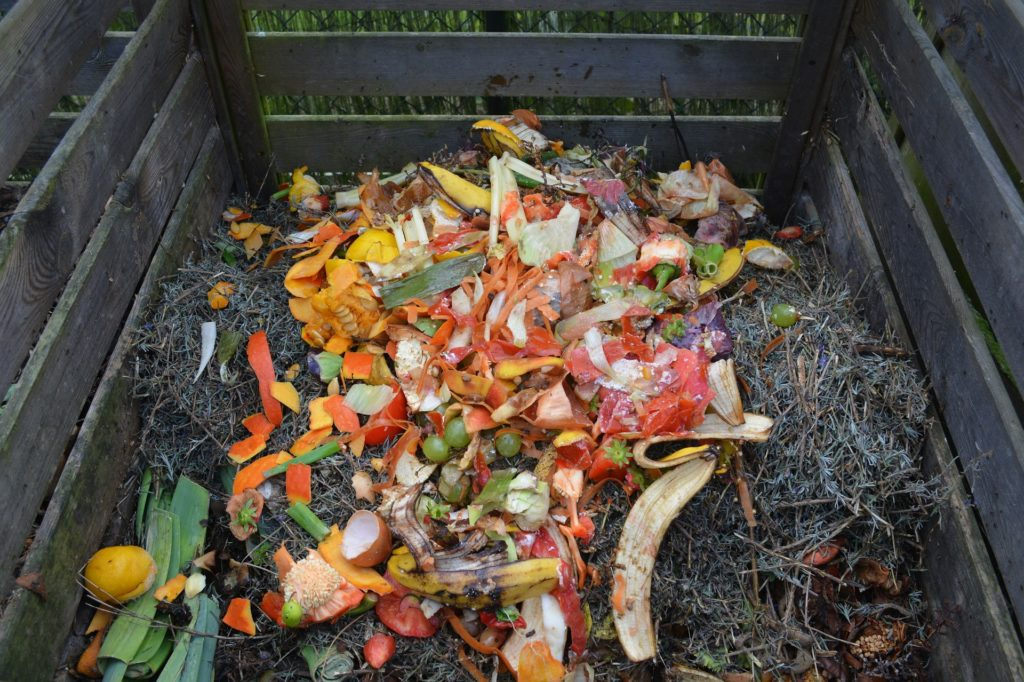 Tips To Teach Child About Composting