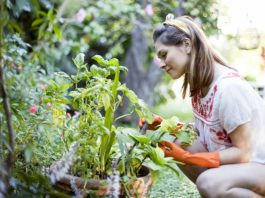 Things to Keep in Mind while Gardening during Pregnancy