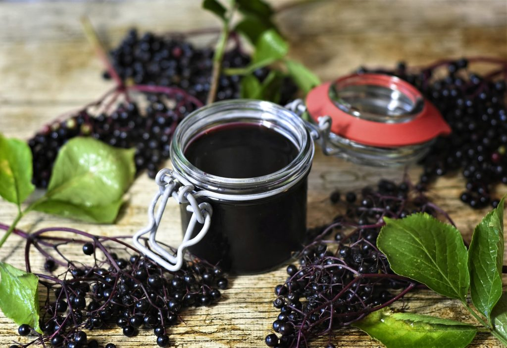 Elderberry For Kids And Babies: Is It Safe??