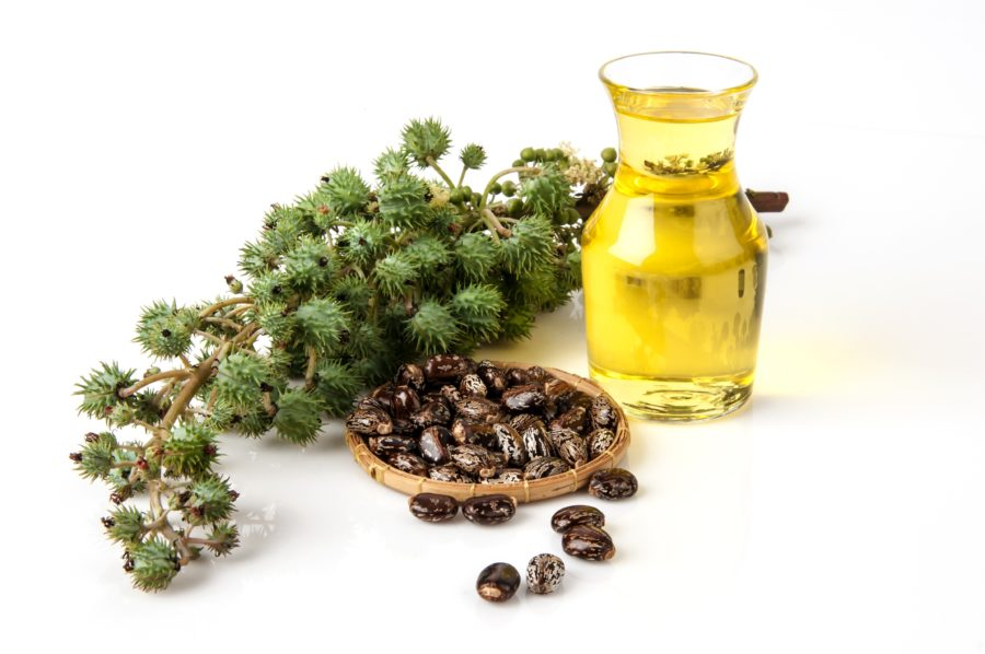 Top 11 Best Herbs to Boost Fertility