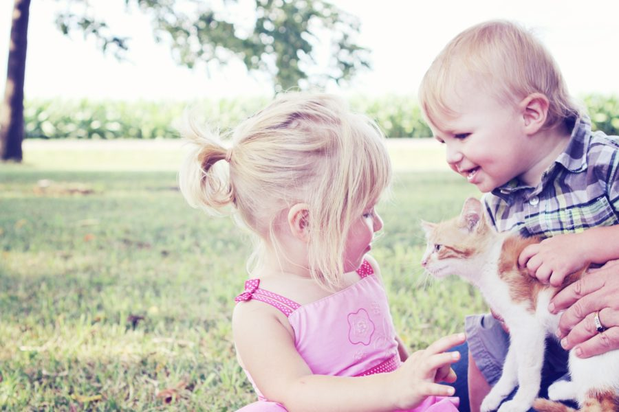 Know The Reasons Why Pets Are Great For Kids